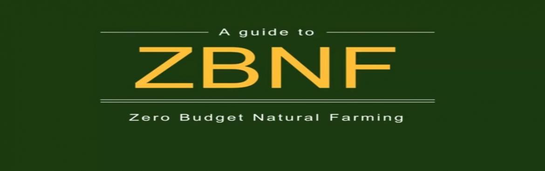 Farm visit - Mecca of Zero budget Nature Farming - Bannur Krishnappa
