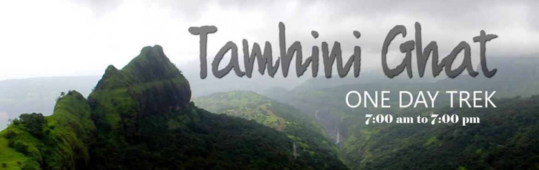 One Day trek to Tamhini Ghat - Vinzai Sacred Grove
