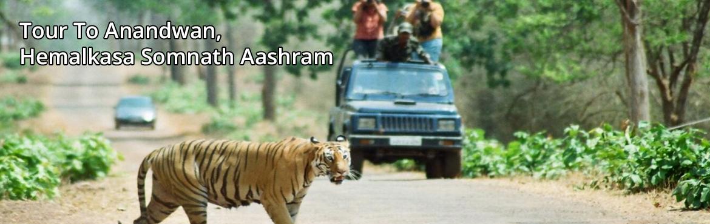 Tour To Anandwan, Hemalkasa  Somnath Aashram On 17th March - 21st March