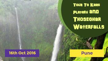 Tour To Kaas Plataeu and Thoseghar Waterfalls