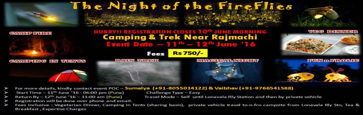 Rajmachi Trek - The Night Of The FireFlies Batch 3, June 11-12, 2016