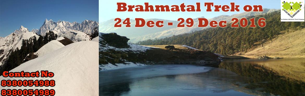 Book Online Tickets for Trek to Brahmatal , Nainital. About The Event    Region:-Uttarakhand  Duration:- 6 Days Grade:- Easy To Moderate Max Altitude :- 12,100Ft Approx Trekking Km :- 22 Kms Dates:- 24 Dec – 29 Dec 2016                 &n
