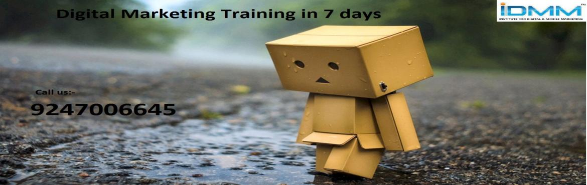Digital Marketing Training in 7 Days