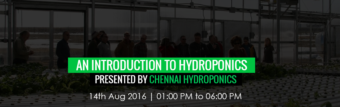 Chennai Hydroponics Workshop: An Introduction to Hydroponics copy