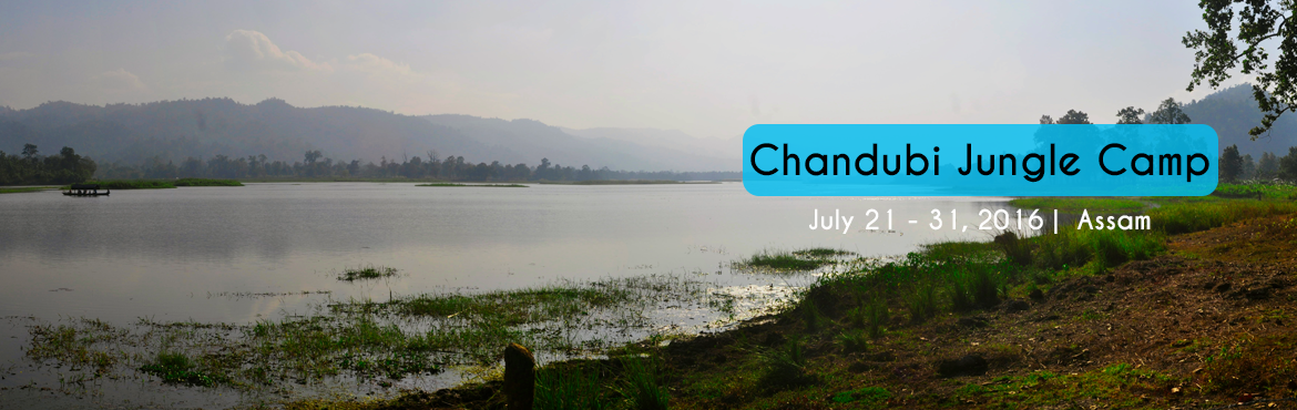 Book Online Tickets for Chandubi Jungle Camp, Guwahati. A bird watcher�s paradise located in Guwahati, Assam is the Chandubi Lake. Staying at the cozy cottages beside the lake at Chandubi Jungle Camp would be a great option. It is located at a distance of 65 kilometers from Guwahati city. The Jungle cam