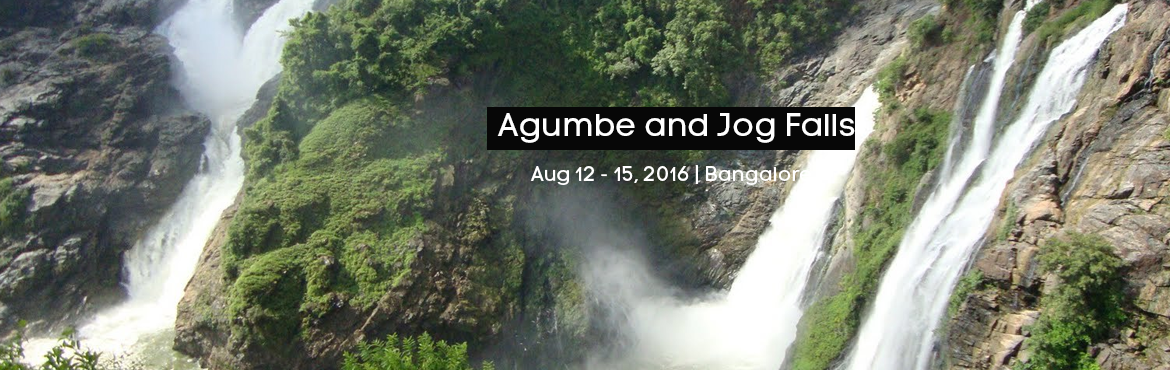 Book Online Tickets for Agumbe and Jog Falls, Shivamogga. Agumbe and Jog Falls Dear Friends, To showcase India\'s rich biodiversity we trespass into the King Cobra \'s trail right into the heart of Western Ghats - The Agumbe rainforest.Usually Indian wildlife is identified by powerful species like the Tiger