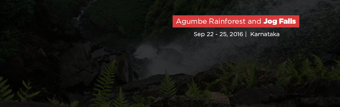 Book Online Tickets for Agumbe Rainforest and Jog Falls, Agumbe. Dear Friends,To showcase India\'s rich biodiversity we trespass into the King Cobra \'s trail right into the heart of Western Ghats - The Agumbe rainforest.Usually Indian wildlife is identified by powerful species like the Tigers and the Elephants, b