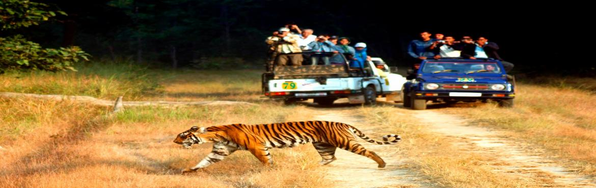 Book Online Tickets for StoneheadBikes-Weekend Motorbike Tour to, NewDelhi. A weekend getaway to one of the most famous National Park in India. Situated on the outer Himalayas, Corbett National Park is home to around 160 Bengal Tigers and wide variety of bird and animal life. A motorcycle tour through the lush green valley i
