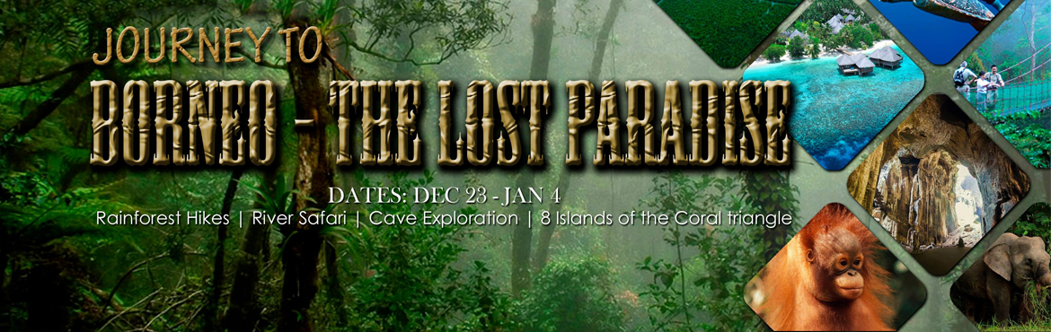 Journey to Borneo - The Lost Paradise