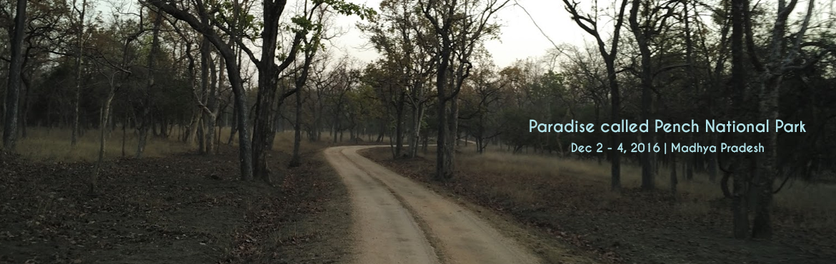 Paradise called Pench with jungLEADz