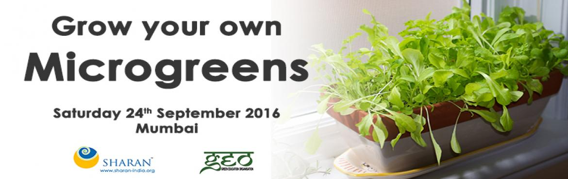 Book Online Tickets for Grow your own Microgreens, Mumbai.  Microgreens are an excellent source of vitamins and proteins and can be easily grown indoors.  Learn how to grow delicious gourmet style microgreens in a variety of flavours and colours with Savio Souza of The Green Education Program. True beauty of