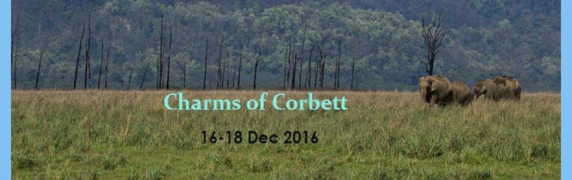 Book Online Tickets for Charms of Corbett with jungLEADz, Ramnagar. A 3 day 2 night excursion to Jim Corbett National Park. 6 safaris await us along with a whole host of fun and learning games to learn about the park and its wildlife. Stay in the heart of the forest at Dhikala for a true wilderness escape. Package is