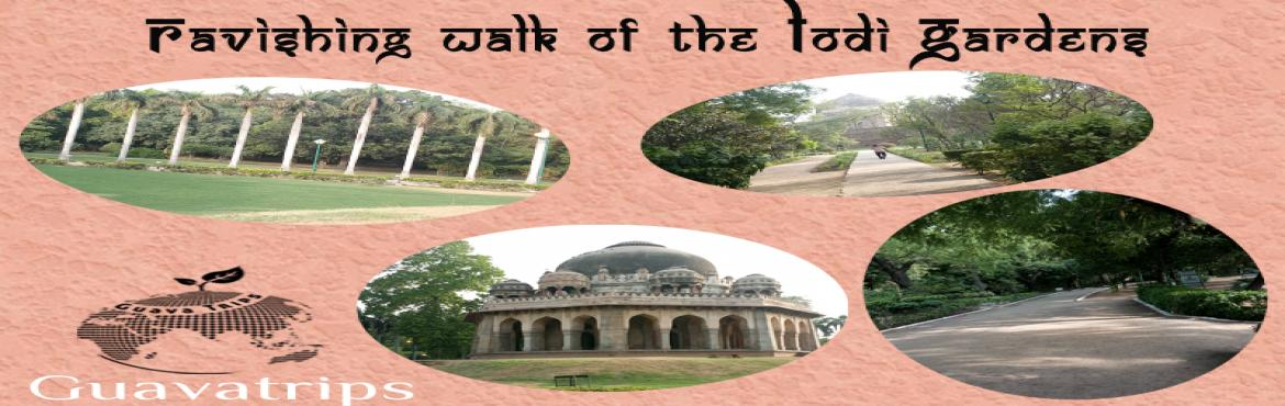 Ravishing Walk of Lodi Gardens