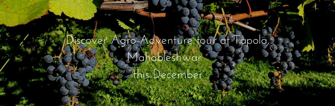 Discover Agro Adventure tour with Tent-Stay at Tapola (Mahableshwar)