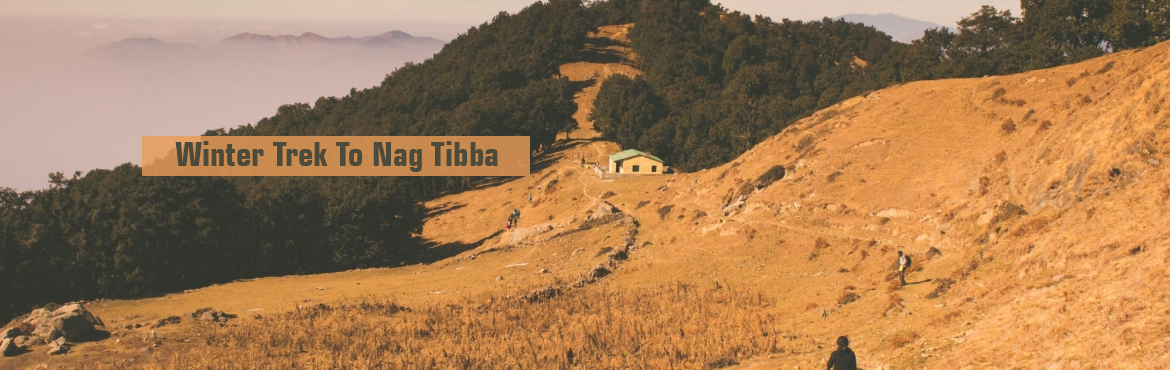 Book Online Tickets for Winter Trek To Nag Tibba, Mussoorie. Nag Tibba also called as Serpent's Peak, is the highest peak in the lesser Himalayas in the Garhwal region. Situated at a height of 3022 meters above the sea level, the peak offers majestic views of some remarkable peaks such as Swargarohi