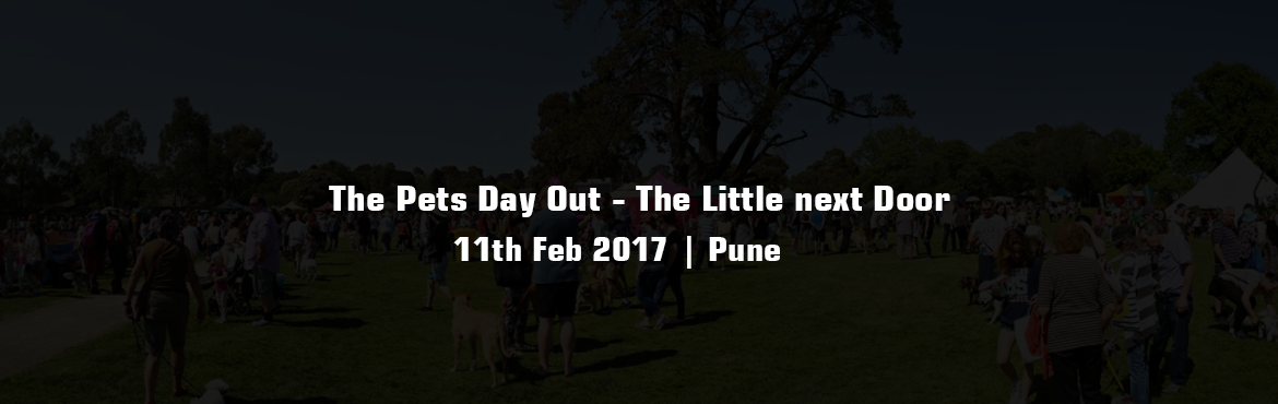 The Pets Day Out - The Little next Door