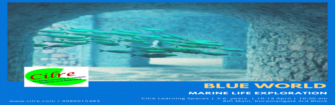 Book Online Tickets for Blue World, Bengaluru.  Blue world explores the wonders & beauty of the marine ecosystem. Marine life is exciting with its variety of fish, corals, nettles, sponges and more. With its so many shades of blue, its beauty is waiting to be explored by children. Childr