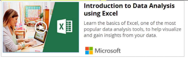 Advanced Excel Workshop over McDonalds n Chaayos, Data Analytics Beginner