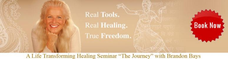 THE JOURNEY SEMINARS BY MIND-BODY EXPERT BRANDON BAYS INDIA TOUR 2012