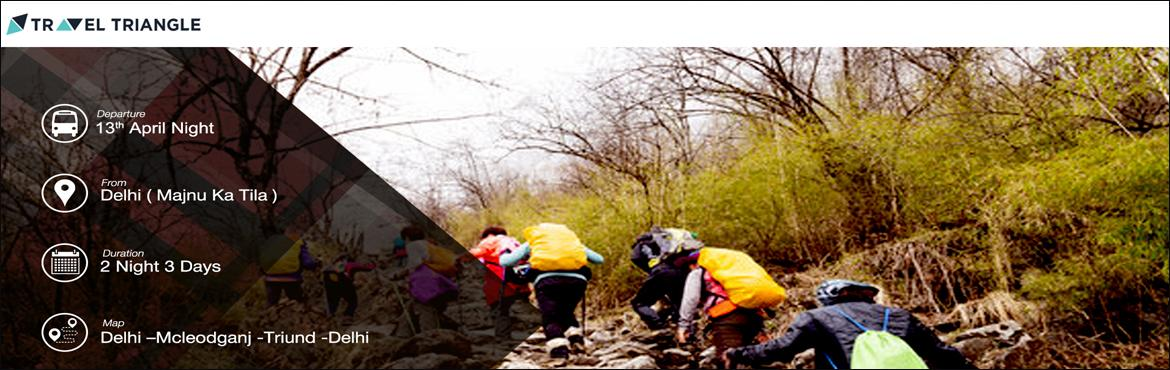 Mcleodganj - Triund Trekking and Hill Camping