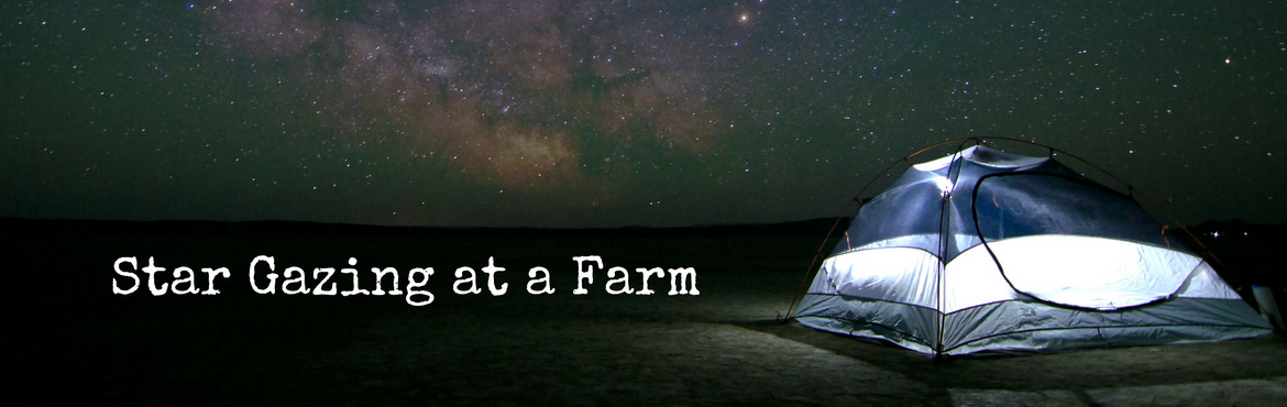 Camping, Barbecue and Stargazing at a Farm