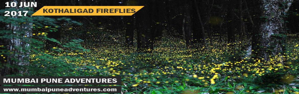 Fireflies Kothaligad Trek-Mumbai Pune Adventures-10 June 2017