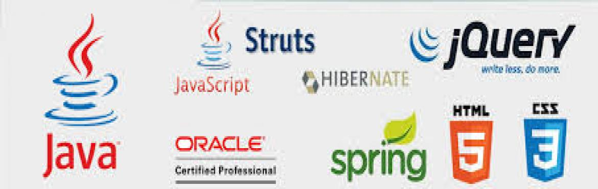 Core Java training for College Students