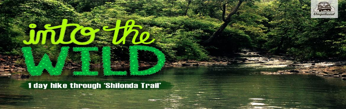 Into The Wild (1 day hike through Shilonda Trail)
