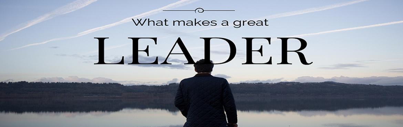 LEADERSHIP DEVELOPMENT - A PROFESSIONAL APPROACH (WEBINAR)