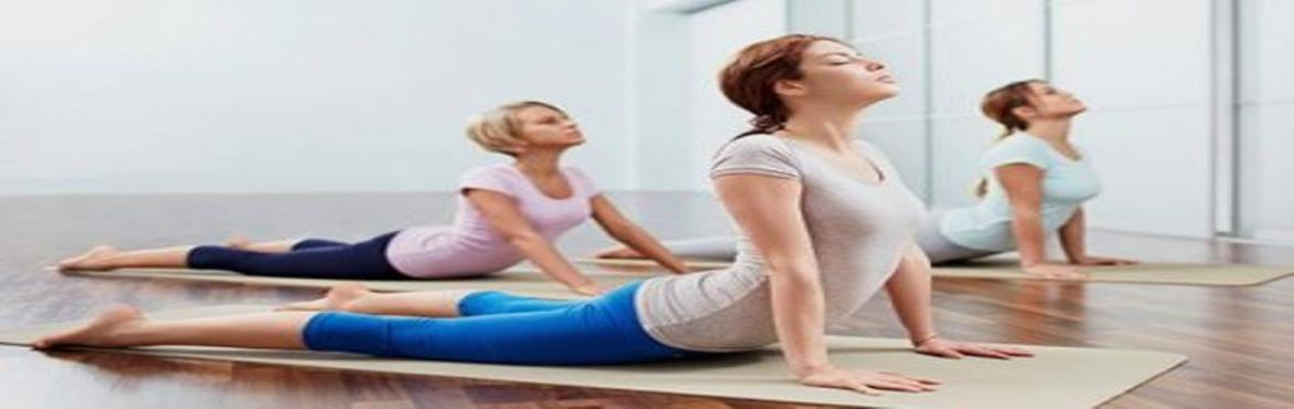 Book Online Tickets for 300 Hour Yoga Teacher Training in India , Rishikesh.   There is well-known facility such as Yoga teacher training in Rishikesh which will help you to know all about the asana like Kapalbhati Yoga and Sirsasana. Thus connect with the Yoga experts and avail immense of the benefits of learning about