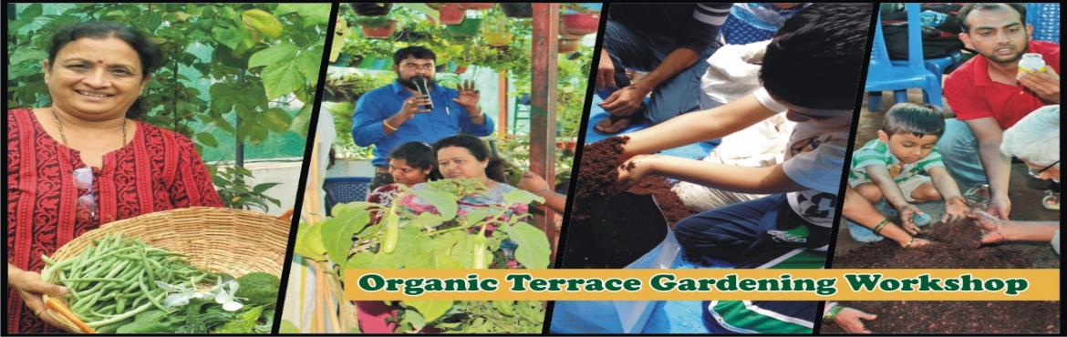 Book Online Tickets for Organic Terrace and Balcony Gardening Wo, Bangalore.  My Dream Garden reaches out a hand to help for those who want a fresh environment with decorating your balconies, passages, front space, indoor and mainly to grow fresh and organic vegetables on an empty terrace or space around.   Put hands tog