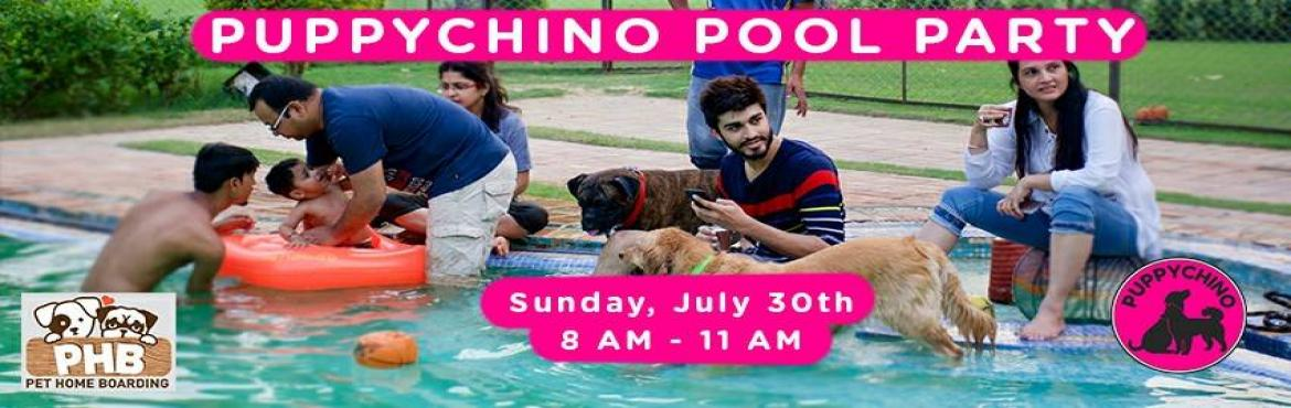 Puppychino Pool Party