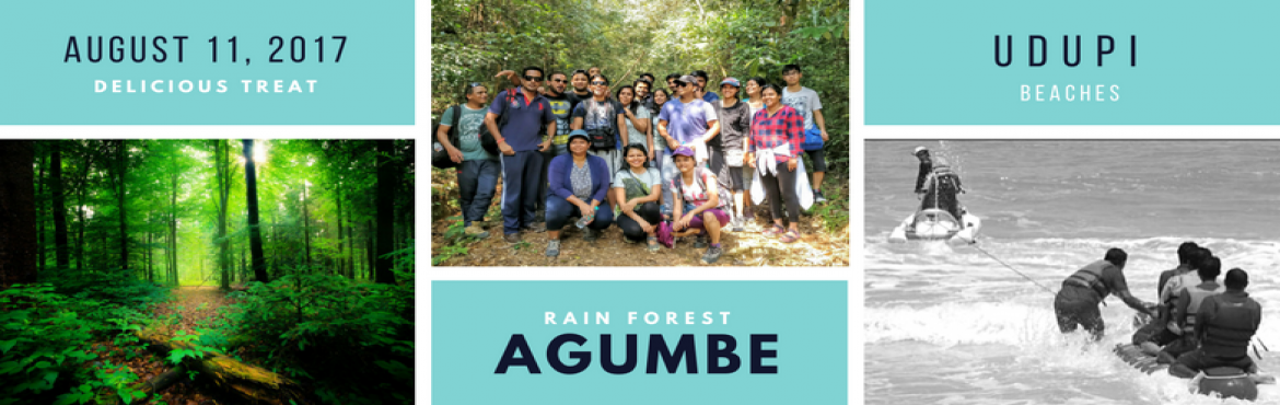 Long weekend special: Into The Wild @ Agumbe