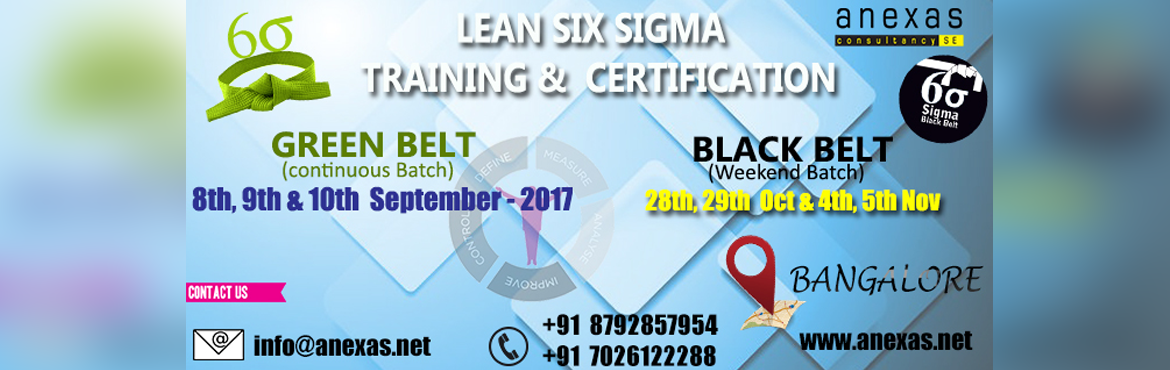 Lean Six Sigma Black Belt Training and Certification (Weekend Batch)