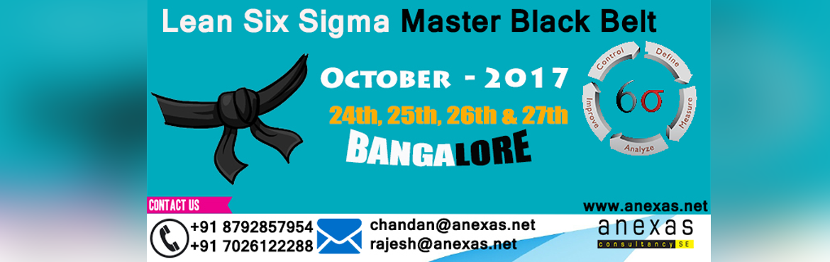 Lean Six Sigma Master Black Belt Training and Certification (Continuous Batch)