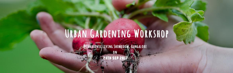 Organic Garden at Urban Spaces