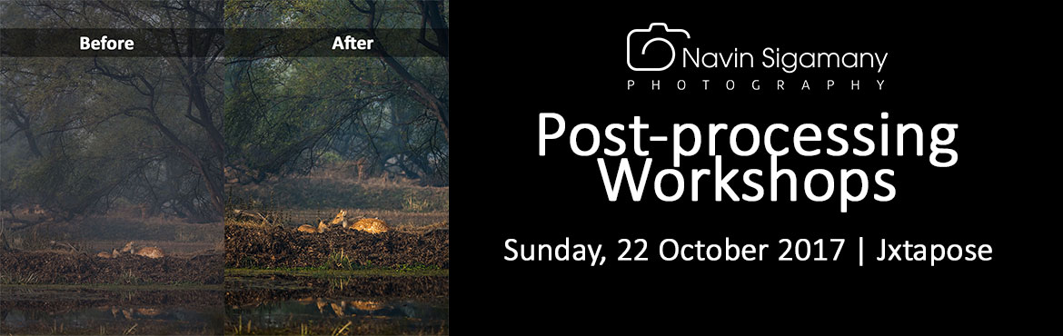 POST-PROCESSING WORKSHOPS by Navin Sigamany