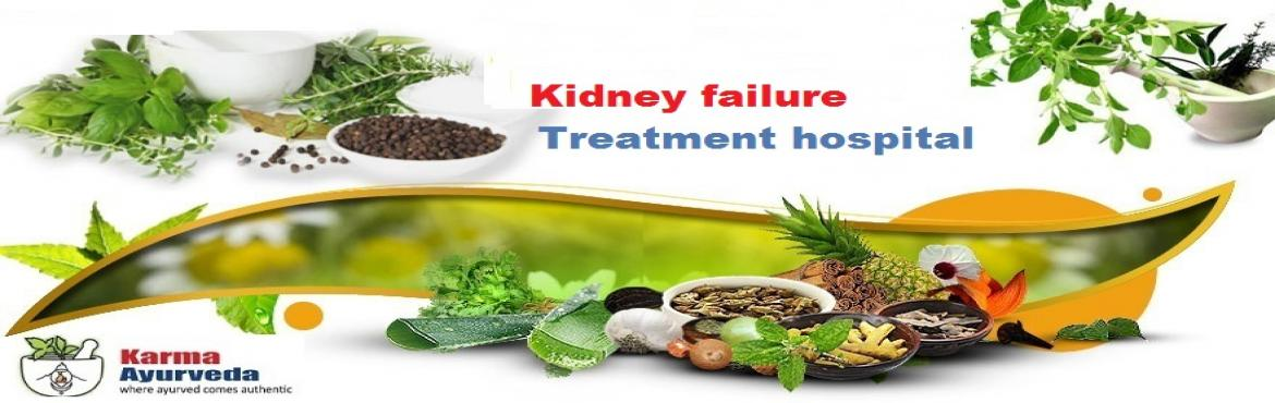 Ayurvedic Kidney Disease Treatment and Medication