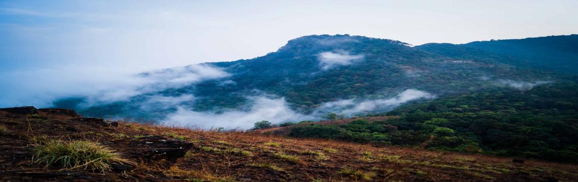 Book Online Tickets for Kodachadri Trek | Plan The Unplanned, Bengaluru. Kodachadri Trek comprises of a complete package of natural beauty - it possesses compact forests, beautiful waterfalls en route, gorgeous jungle trails and picturesque landscapes!Located amidst the Western Ghats of Karnataka, Kodachadri is 1,343 mete