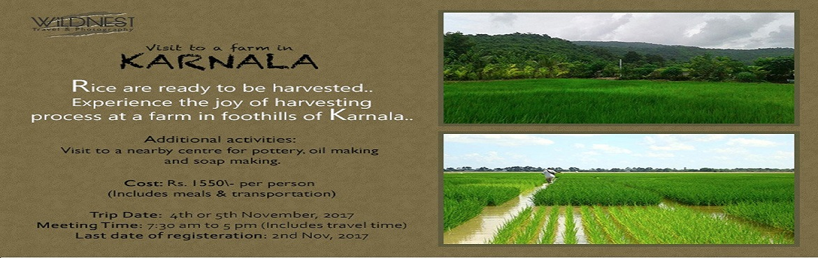 Book Online Tickets for Rice Harvesting at Karnala by Wildnest , Pen.   Come and spend a day away from the hustle bustle of city life. Get refreshed in the lap of nature. Join for a fun filled day experiencing Rice harvesting In Karnala. A wonderful opportunity to spend time with family in nature and give your kid