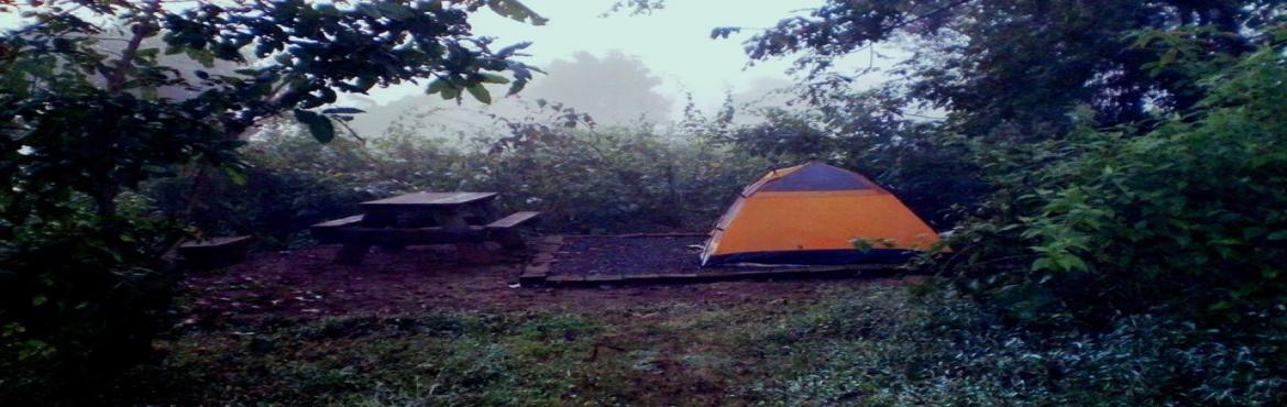 New Years Eve Camping Celebration at Kolad