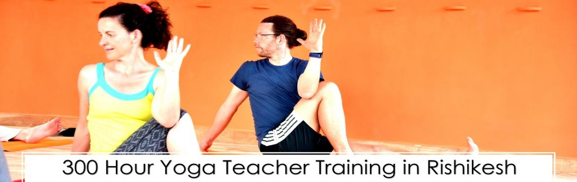 Hatha Yoga School - 300 hour yoga teacher training in Rishikesh
