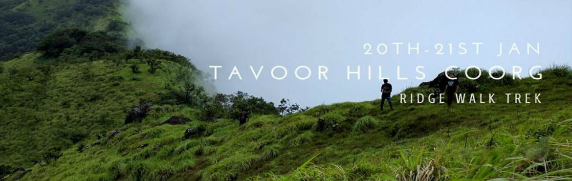 Book Online Tickets for Tavoor Hills Coorg - Ridge Walk Trek, Bengaluru. Tavoor trek is one of the lesser known treks in Bhagamandala, Coorg. Tavoor hill offers the best scenic views of the Coorg. It is located around 294 kms from Bangalore. The trail in the Tavoor hill is also known as Dumchi Gudde by the locals. Once yo