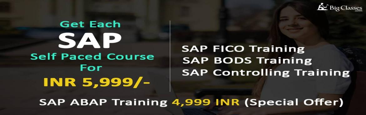 Master SAP Courses Self Paced SAP Training Course Each in 5999 INR  SAP ABAP in 4999 INR