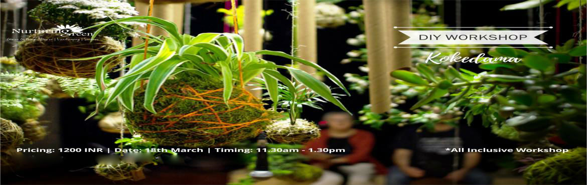 Book Online Tickets for DIY Workshop | Kokedama, Gurugram.  A traditional Japanese gardening technique of creating an artful, instagrammable plant wrapped in a ball of soil, covered with moss. Nurturing Green, the new age garden centre invites you to come, learn the art of making a spring inspired Japan