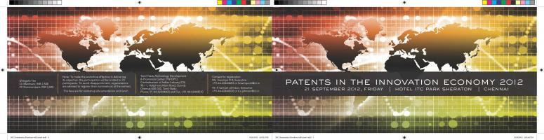 Patents in the Innovation Economy 2012