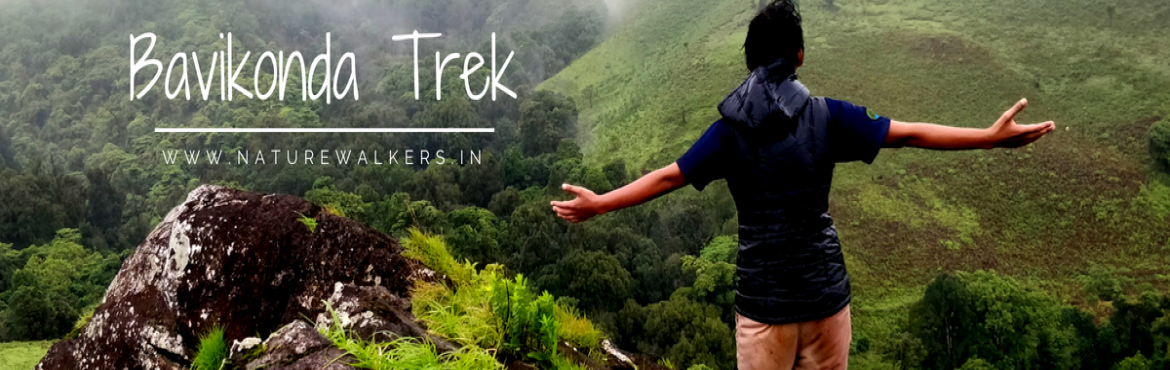 Book Online Tickets for Bavikonda Trek-Kudremukh (7-9th Sep), Bengaluru. We have this beautiful place – Bavikonda in the heart of Kudremukh National Park with lush green meadows, numerous waterfall, dense jungle and more. Bavikonda-Kulchukki is one of the non-commercial destinations for trekking