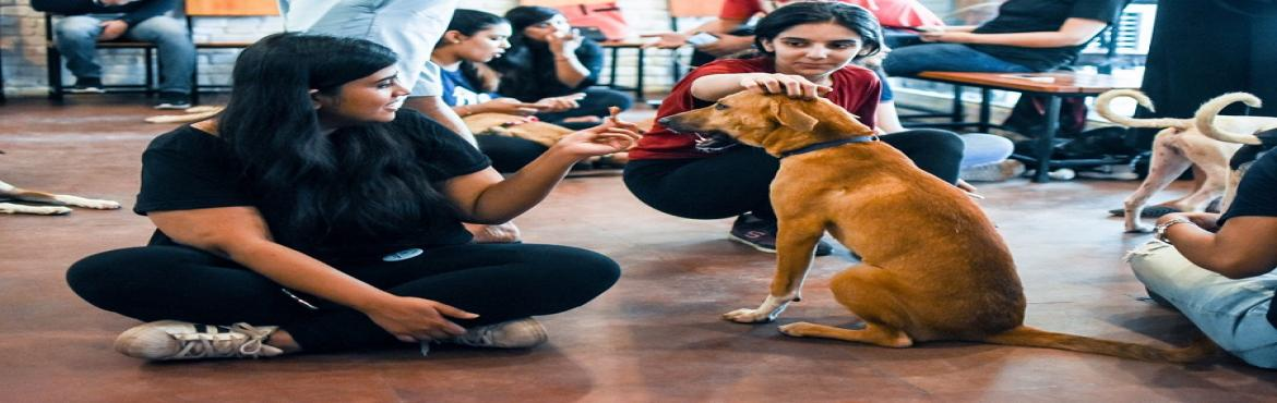 Book Online Tickets for Celebrate Paw-fect Friendships day with , New Delhi. As it is believed that the dogs can be your best friends, make your way to DLF Place for a weekend full of furry and fleecy army that's waiting to become friends with you! This friendship's day, get a new friend home as DLF Place in assoc
