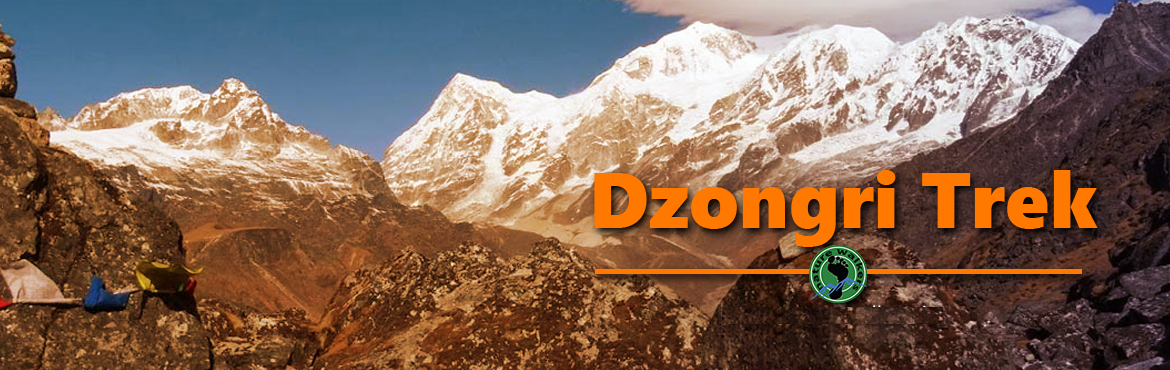 Book Online Tickets for Dzongri Trek : Gate way to Kanchenjunga , Yuksom. The North Eastern region of India offers numerous adventurous and remarkable trails that attract a lot of travellers across the globe. Dzongri trek begins from Yuksom and finishes at Yuksom in 5 days. For the trekkers who want to explore more i
