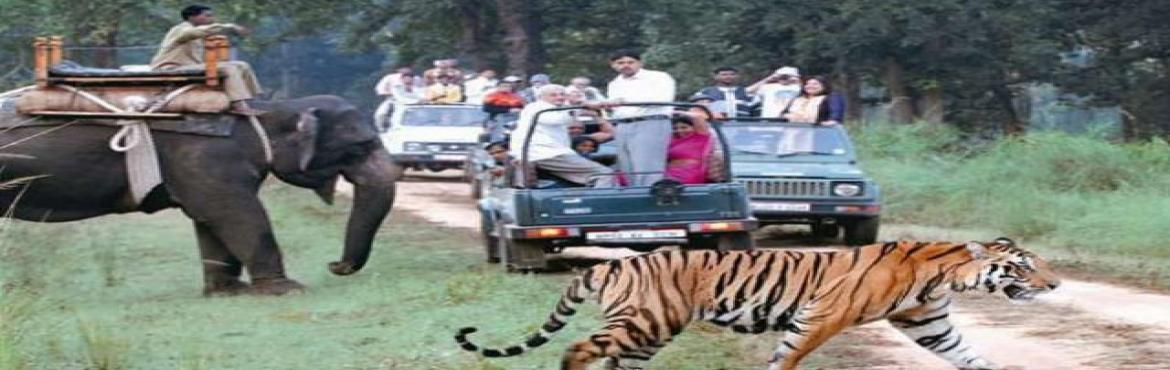 Book Online Tickets for Perfect Wildlife Adventure - JIM CORBETT, Ramnagar. Are you a true nature lover and wildlife excites you? Then, Join us for Jim Corbett National Park Weekend Tour - A perfect tour for you.Jim Corbett National Park is a lush green reserved space offering stunning wildlife locations . Huge tiger p